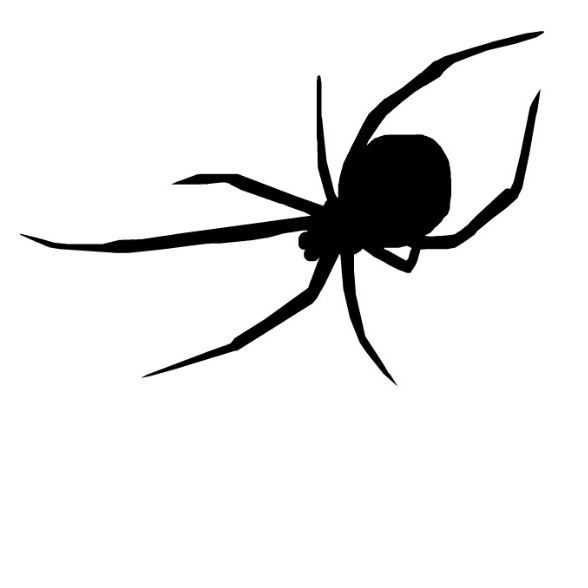 Black Widow Spider Silhouette | www.imgkid.com - The Image ...